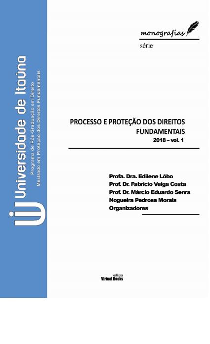 PROCESSO E PROTECAO DOS DIREITOS FUNDAMENTAIS vol01